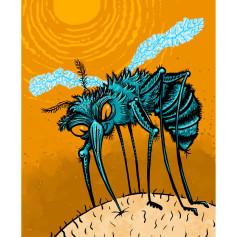 11x14-MosquitoWeb